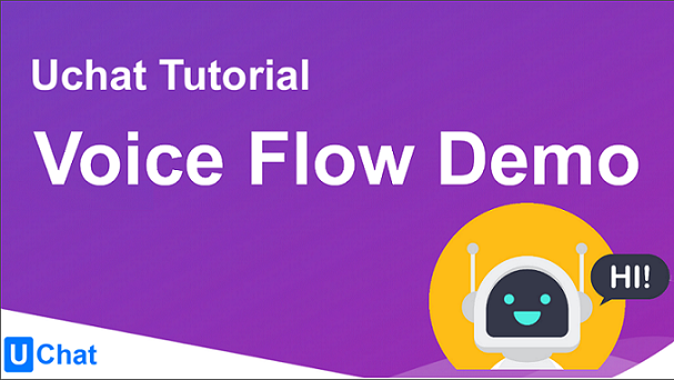 Basic Features of the Voice Flow